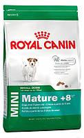 Корм для пожилых мини-собак Royal Canin Mini Mature +8