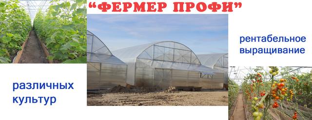 фермерские теплицы Николаев