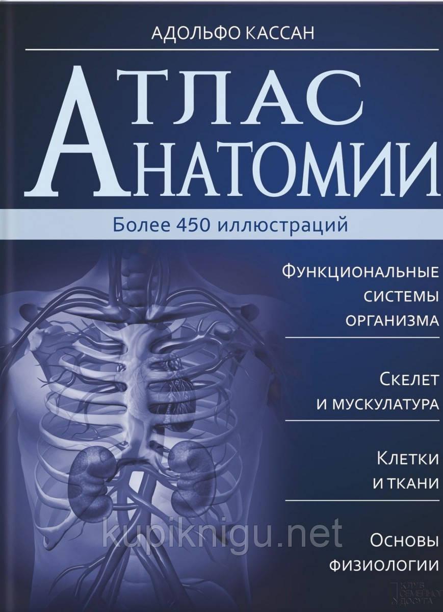 Атлас анатомии Кассан