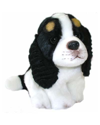 Собака Эля Fancy