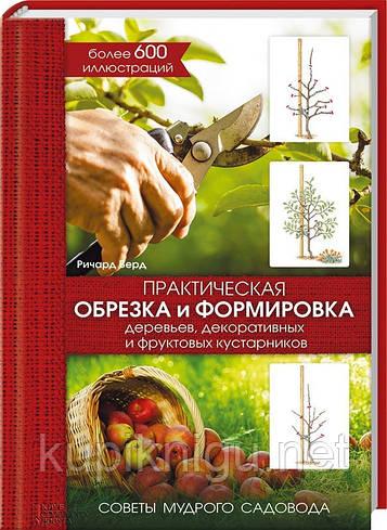 Практическая обрезка и формировка деревьев, декоративных и фруктовых кустарников.
