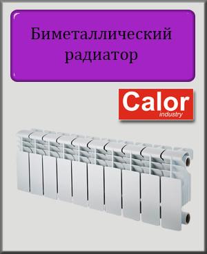 Біметалічний радіатор Calor 200х96