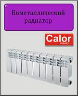 Биметаллический радиатор Calor 200х96