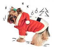 Костюм Pet Fashion Карнавал для собак