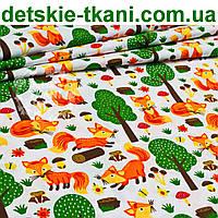 Ткань с лисичками, грибами и зелеными деревьями на белом фоне, № 909а