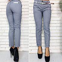 """Женские летние стильные брюки 375 """"Коттон Лошадки"""""""