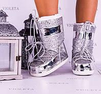 Сапоги Луноходы Мунбутс Moon Boot серебро MB0002