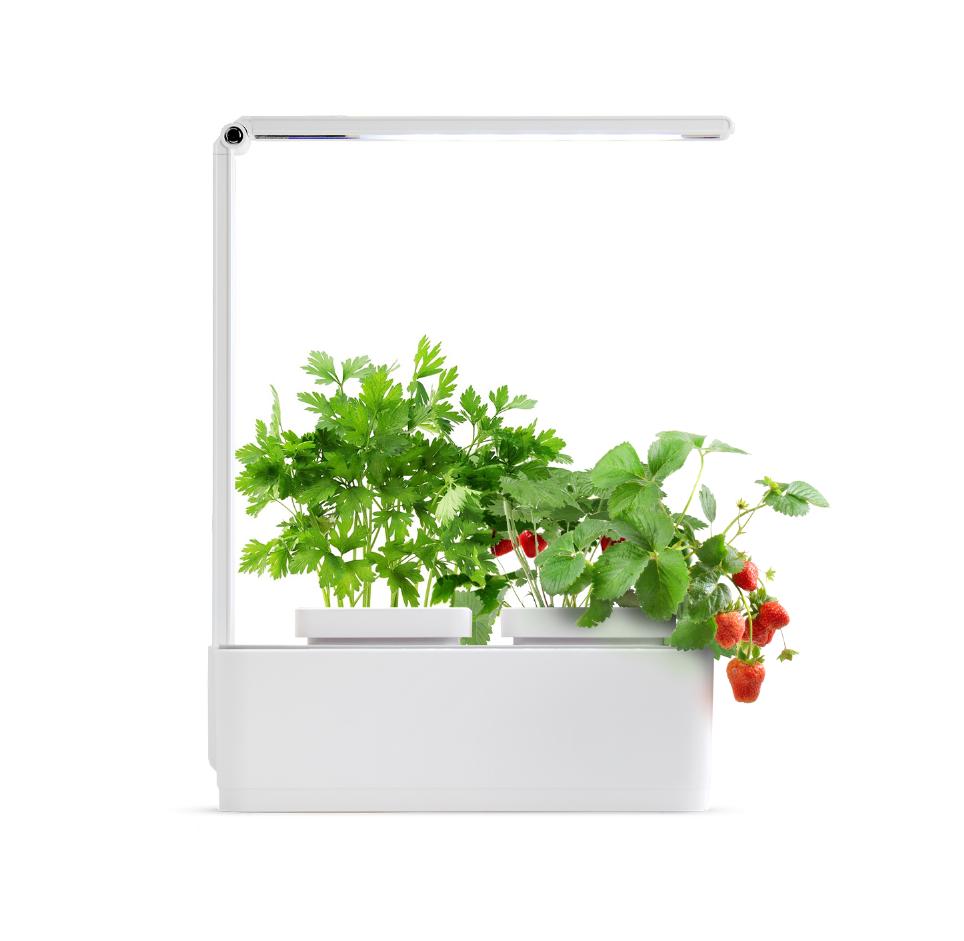 Гидропонная система Magic Garden mini L