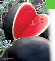 Семена арбуза Красень (весовые от производителя)