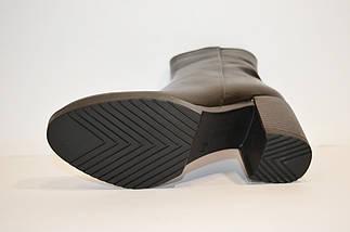 Зимние женские кожаные ботинки DS 045, фото 3