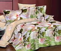 Полуторное постельное белье с простыней на резинке 90/200/25 Фрезия, ранфорс