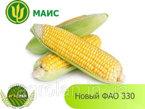 Гібрид кукурудзи Новий (ФАО 330) МАЇС
