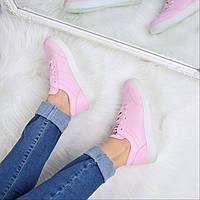 Кроссовки женские Blame розовые 3585, полуботинки женские, обувь дропшиппинг