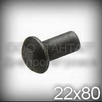Заклепка Ø22х80 стальная ГОСТ 10299-80, DIN 660, ISO 1051 с полукруглой головкой