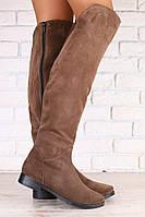 Демисезонные женские ботфорты, на байке, цвет - латте, из натуральной замши, на низком ходу