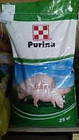 Готовый корм для свиней стартер