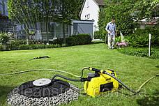 Садовый насос BP 3 Home & Garden, фото 2