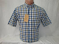Мужская рубашка в клетку с коротким рукавом Piazza Italia, фото 1