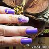 VIP Курс «Безупречный  мастер» (Маникюр и педикюр, Наращивание ногтей все виды , Художественная роспись), фото 8