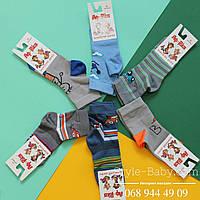 Носки с рисунком для мальчика, детские носочки тм Африка р.14,16