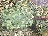Продам веники для бани березовые и дубовые в малых и больших объемах!