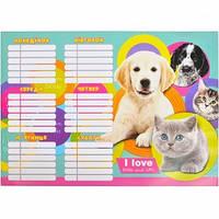 """Расписание уроков """"Коты и собаки"""""""