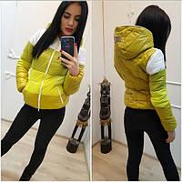 Женская стильная демисезонная куртка-жилет (6 цветов) (р-ры 42-52)