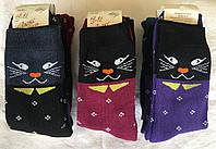 Носки женские Житомир махровые стрейч™ Люкс, фото 1