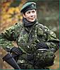 Камуфляж вооружённых сил Дании - Flecktarn-D