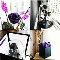 Вечная роза в стеклянной колбе, не вянет 5 лет, ФИОЛЕТОВАЯ!