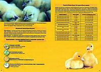 Пуріна® Курка Натурка Гуска та качка 10030(Ціна в прайсі)
