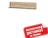 Полка 125 Дина ВМВ Холдинг