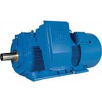 Высоковольтный двигатель HGF 315C/D/E 185 кВт 1000 об/мин. B3R 6000В