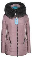 Модные куртки зимние для женщин новинки