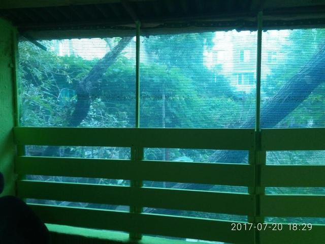 Зеленая Сетка-теневка на балконе