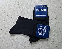 Мужские носки Житомир Хлопок чёрные