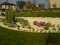 Удобрения крупномероы, кустов, цветов, фото 1