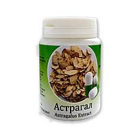 Астрагал (Astragal) против вирусов и паразитов