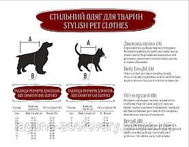 Дождевик ФОКС  XS 23-26/28-32см для собак, цвет - красный/зеленый, фото 3