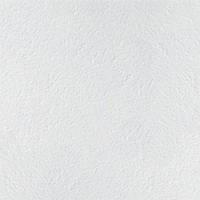 Потолочная плита Armstrong RETAIL Plain 600*600*12мм/14мм