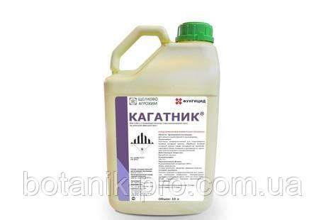 Фунгицид Кагатник, ВРК,10л.