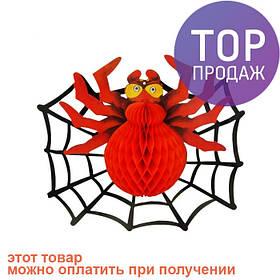 Декор 3D Паук с паутиной / аксессуары для  праздников