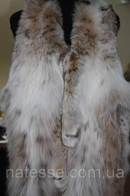Рысь канадская мех шкуры