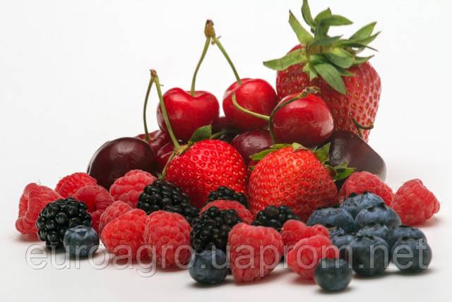 Урожай косточковых и ягод: прирост и сокращение