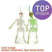 Резиновый скелет средний / аксессуары для  праздников