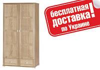 Шкаф 2d2s Дина ВМВ Холдинг