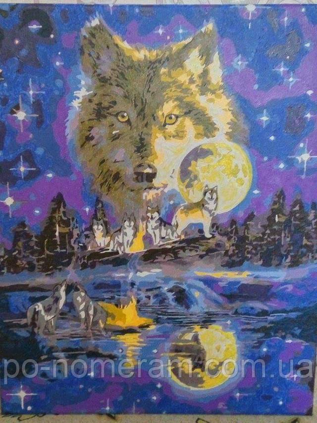 Фото завершенной картины-раскраски Волчья луна VP623