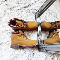 Женские ботинки тимбы цвет кэмел код 355