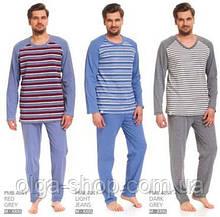 Пижама мужская зимняя Dobra Nocka 4051 хлопок