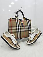 Набор: сумка, кошелек, обувь Barburry